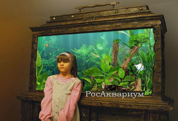 Продажа авторских аквариумов.