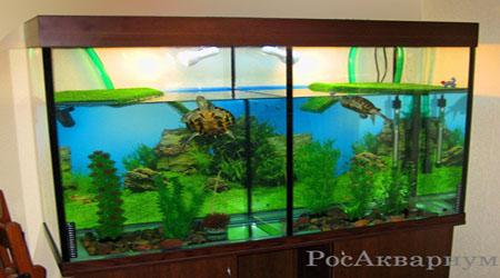 Продажа аквариумов для черепах.