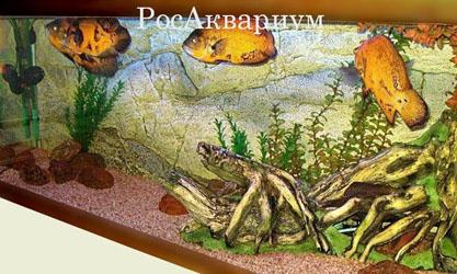 Продажа больших аквариумов.