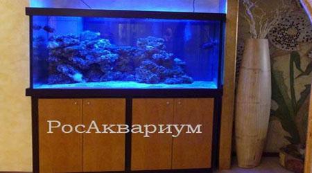 Продажа морских аквариумов.