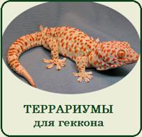 Купить террариум для геккона