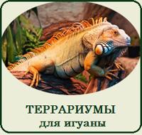 Купить террариум для игуаны, фото, цена