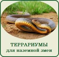 Купить террариум для наземной змеи