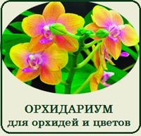 Купить террариум для орхидей