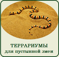 Купить террариум для пустынной змеи