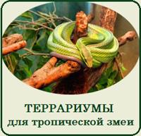 Купить террариум для тропической змеи