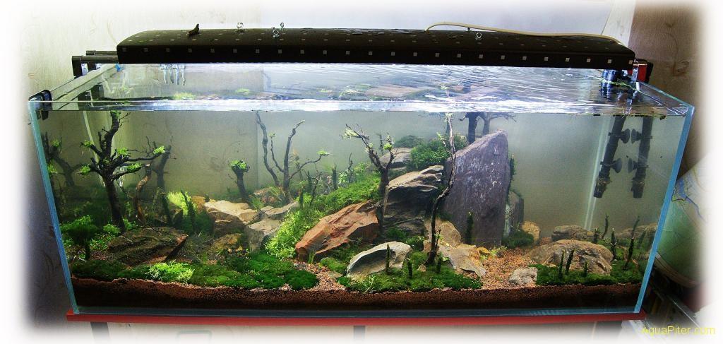Стеклянная крышка для аквариум своими руками 62