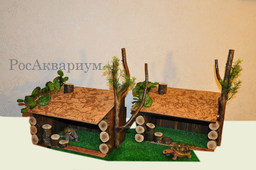 Как сделать черепахе домик фото 597