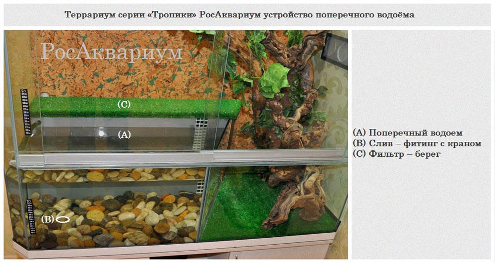 Террариум для зеленой игуаны своими руками 990
